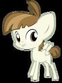 Tipos de poneis