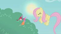 Fluttershy disgusted S01E07