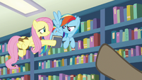 Fluttershy offers Martingale's book to Rainbow S9E21