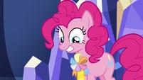 Pinkie Pie wearing an ambassadorship ribbon S7E11