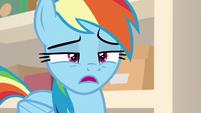 "Rainbow Dash ""that doesn't make any sense"" S8E17"