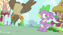 Spike looking for Rarity S4E23