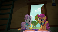 "Sweetie Belle ""looking for things you like to do"" S6E4"