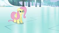 """Fluttershy snaps """"not! your! friend!"""" S03E10"""