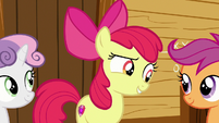 Apple Bloom -are you two thinkin' what I'm thinkin'-- S7E21