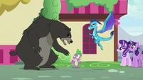 """Bear-Thorax """"back away, Spike!"""" S7E15"""
