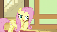 Fluttershy allows Zephyr Breeze to stay S6E11