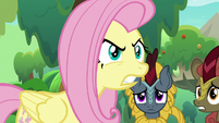 Fluttershy getting angry at Applejack S8E23