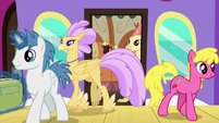 Ponies and Hippogriffs getting off the train S8E6