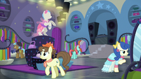 Ponies browsing in Rarity For You S8E4