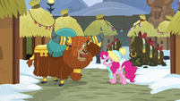 Prince Rutherford happy to see Pinkie MLPBGE