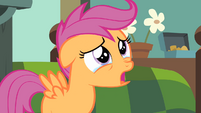 Scootaloo '... what if my wings never grow' S4E05