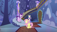 Starlight asks Fluttershy where the animals are S6E21