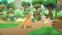 Applejack running up to Fluttershy S8E23