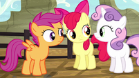 Cutie Mark Crusaders confused S5E6