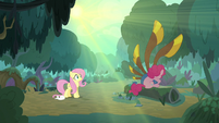 Fluttershy finds Pinkie Pie in the forest S8E18