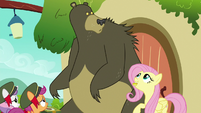 Harry looks at Fluttershy holding a bit S6E15