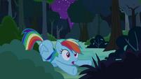 Rainbow Dash cheers Daring Do on S4E04