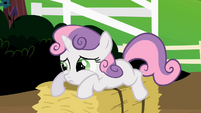 Sweetie Belle looking sad on a hay bale S2E5