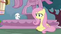 Fluttershy makes motions with her paws S9E18