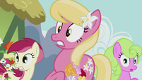 Flower ponies in shock S5E9