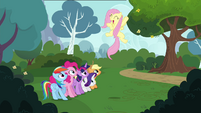 """Fluttershy shouting """"perfect!"""" S4E16"""