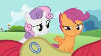 Sweetie Belle asking about Apple Bloom's cutie mark S2E06