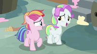 Toola Roola and Coconut moved by Twilight's story S7E14