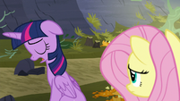 """Twilight """"they're just gonna fight again"""" S5E23"""