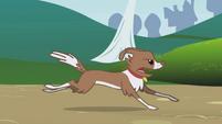 Winona chases the rabbits S1E04