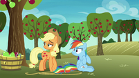 Applejack and Rainbow Dash looking behind S8E5