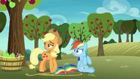 Applejack and Rainbow Dash looking behind S8E5