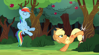 Applejack bucks the apple tree a third time S6E18