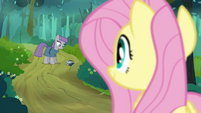 Fluttershy looking at Maud S4E18