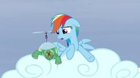 "Rainbow ""they go three hoof steps forward!"" S5E5"