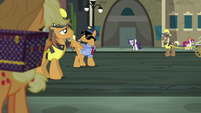 Rarity waves from across the street S5E16