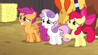 Cutie Mark Crusaders reveal the truth S5E6
