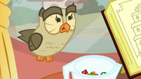 Owlowiscious scared S3E11