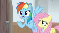 "Rainbow ""I can't get through a sentence"" BGES3"