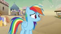 Rainbow Dash watches A. K. Yearling run away S7E18