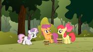 S01E23 Apple Bloom i Sweetie Belle zgadują o jakiego kucyka chodzi