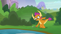 Smolder picking up another rock S8E24