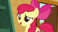 "Apple Bloom ""help you find your purpose"" S6E19"