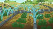 Applejack waters two rows of vegetables S6E10