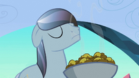 Crystal stallion sniffing fritters S3E2