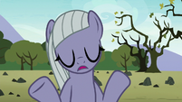 """Limestone Pie """"that's all that matters"""" S8E3"""
