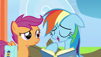 "Rainbow Dash ""I was the youngest pony"" S7E7"