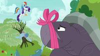 Rainbow and Rarity tie Tortoise-Snap's mouth shut S9E13