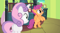 "Scootaloo ""I got an idea for one!"" S4E17"