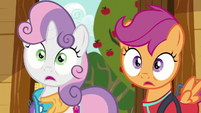 Sweetie Belle and Scootaloo in complete shock S6E4
